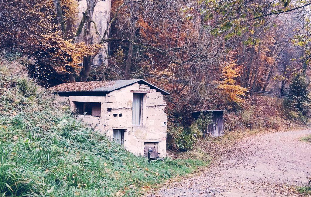 Seehaus Forelle S(ch)austall