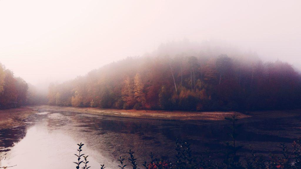 Foog Lake Autumn