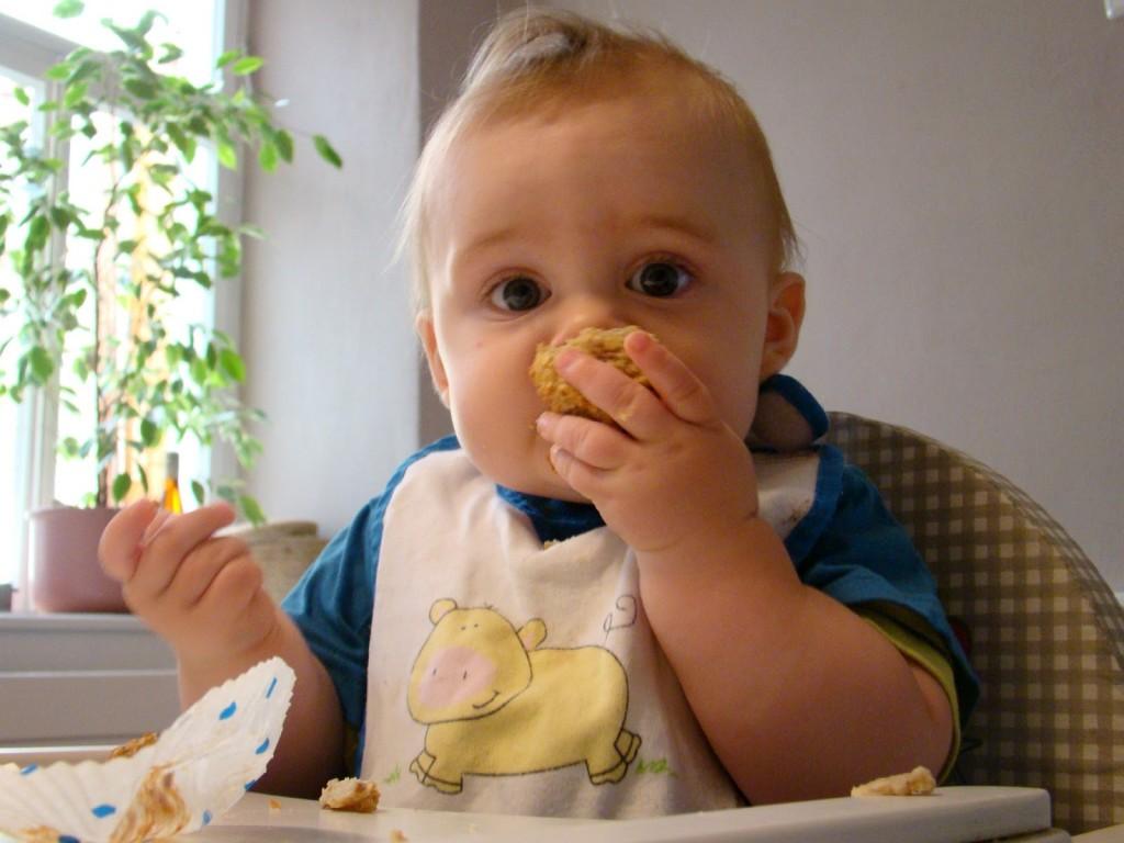 blw rezept frühstück 8 Monate