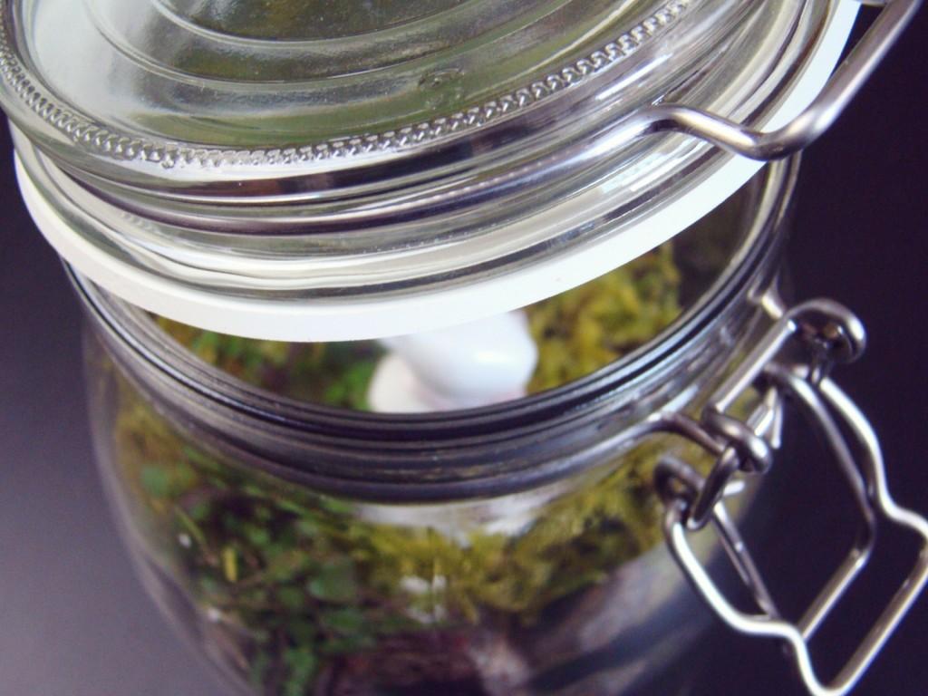 Oster Deko DIY Fairy Garden Terrarium im Glas
