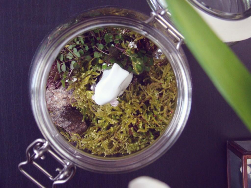 Oster Deko DIY Fairy Garden Terrarium in a Jar