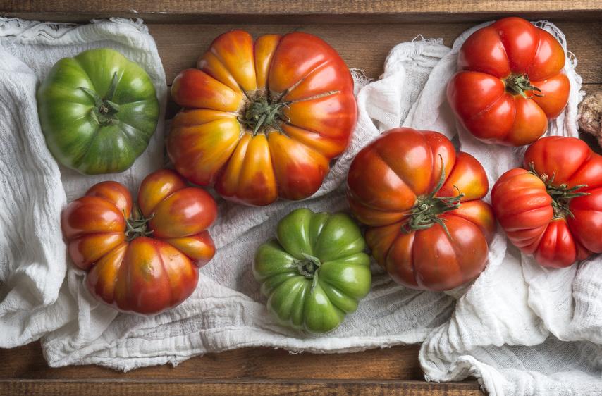 Histaminintoleranz tomaten