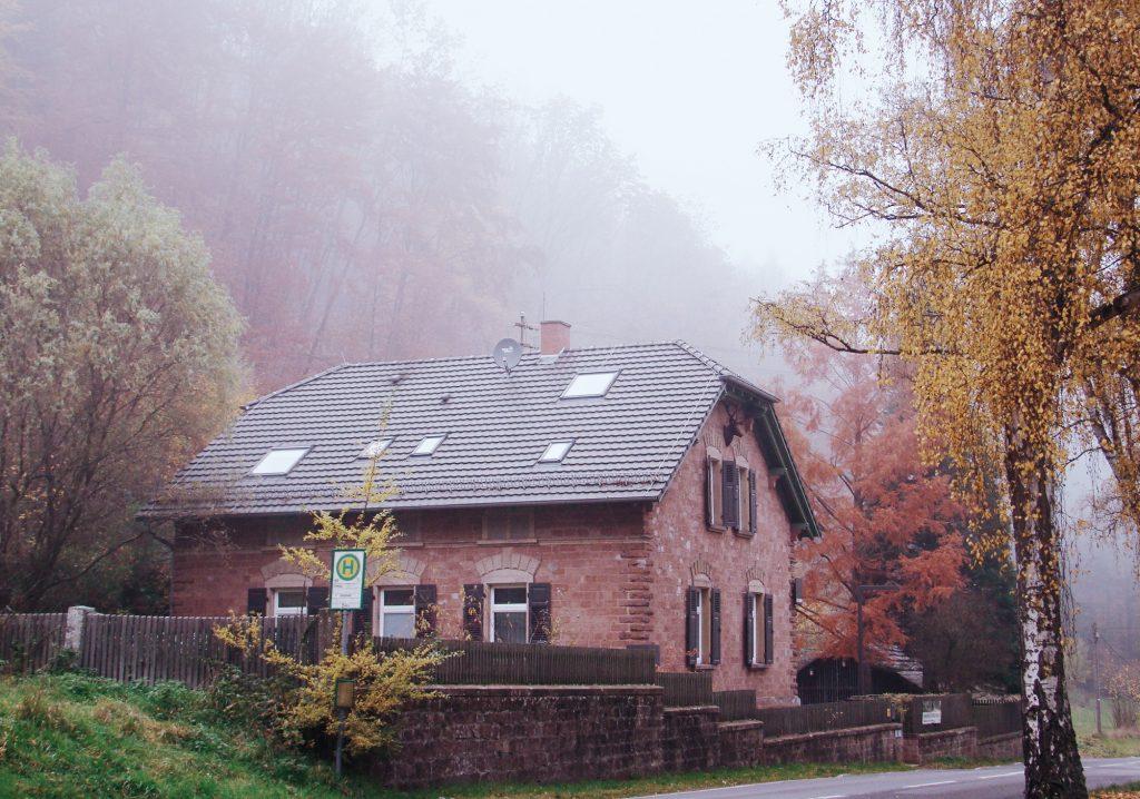 Eiswoog Ramsen Forsthaus Hotel